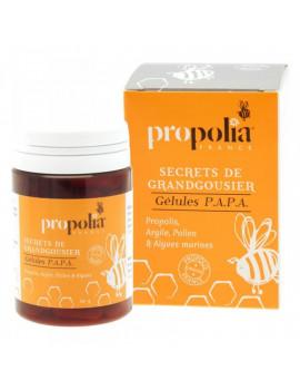 PROPOLIS Argile Pollen et Algues 80 gelules Propolia