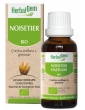 Noisetier bio 50ml Gemmobase Herbalgem