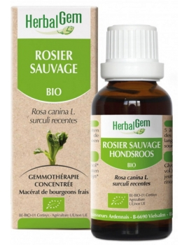 Rosier sauvage Eglantier bio 50ml Herbalgem