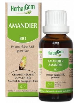 Amandier bio 50ml Gemmobase Herbalgem