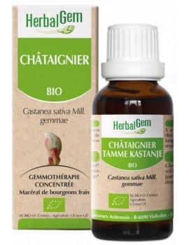 Châtaignier bio 50ml Gemmobase Herbalgem