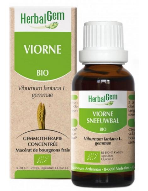 Viorne bio 50ml Gemmobase Herbalgem
