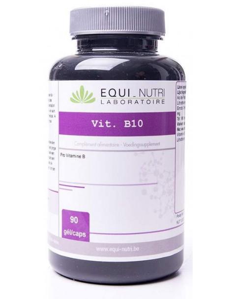 PABA Vitamine B10 Amino-Benzoïque 90 gelules Equi - Nutri