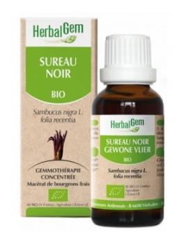 Sureau noir 50ml Gemmobase Herbalgem