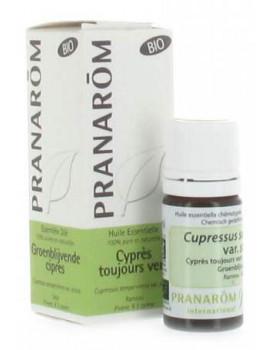 Huile essentielle Cypres toujours vert Bio  5ml Pranarôm