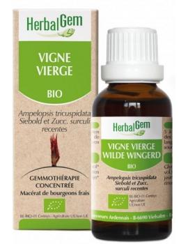 Vigne vierge bio 50ml Herbalgem