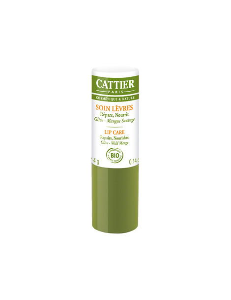 Baume à lèvres réparateur ultra nourrissant Olive Mangue 4 gr Cattier - soin des lèvres