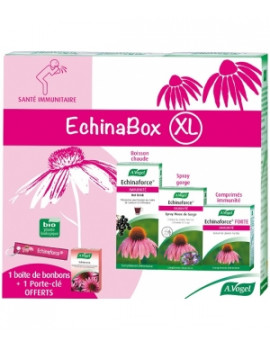 EchinaBox XL A.Vogel