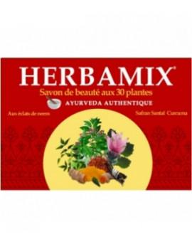 Abcbeauté Savon ayurvédique Herbamix 30 plantes  125 gr Kerala Nature - soin nettoyant