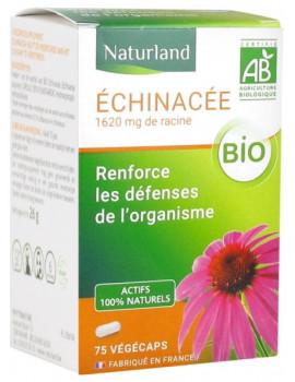 Echinacée Bio 75 gélules végétales Naturland echinacea purpurea,  Plantes en gélules,  Phytothérapie,  abcBeauté