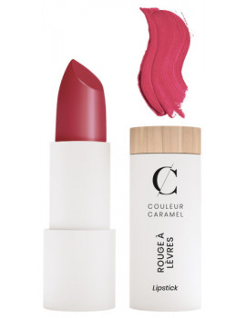 Rouge à lèvres Mat No 121 Rouge Brique 3.5g Couleur Caramel maquillage minéral bio Abcbeauté