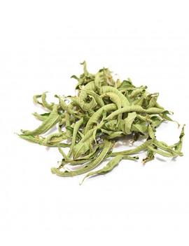 Verveine odorante BIO feuilles entières 100g Herboristerie de Paris verbena officinalis digestif sérénité abcbeauté