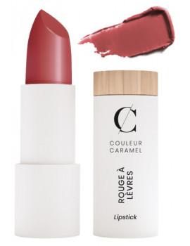 Rouge à lèvres satiné No 507 Terracotta 3,5gr Couleur Caramel