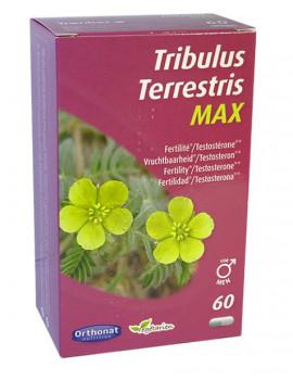 Tribulus terrestris 650 Bien être masculin 60 gélules Orthonat Nutrition confort de l'homme Abcbeauté