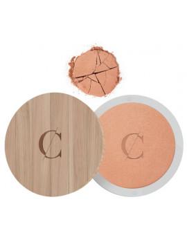 Terre Caramel No 22 Brun orangé nacré effet bronzé 8.5g - Couleur Caramel poudre libre Abcbeauté maquillage