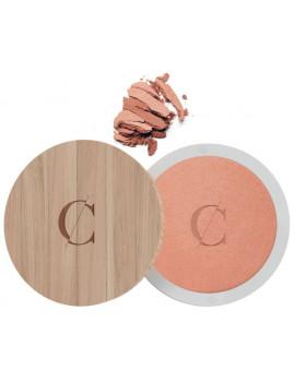 Terre Caramel No 23 Brun beige nacré effet bronzé 8.5g Couleur Caramel poudre compacte teint mat Abcbeauté maquillage