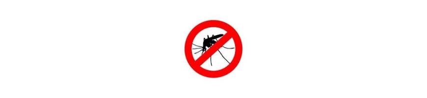 Moustiques Insectes