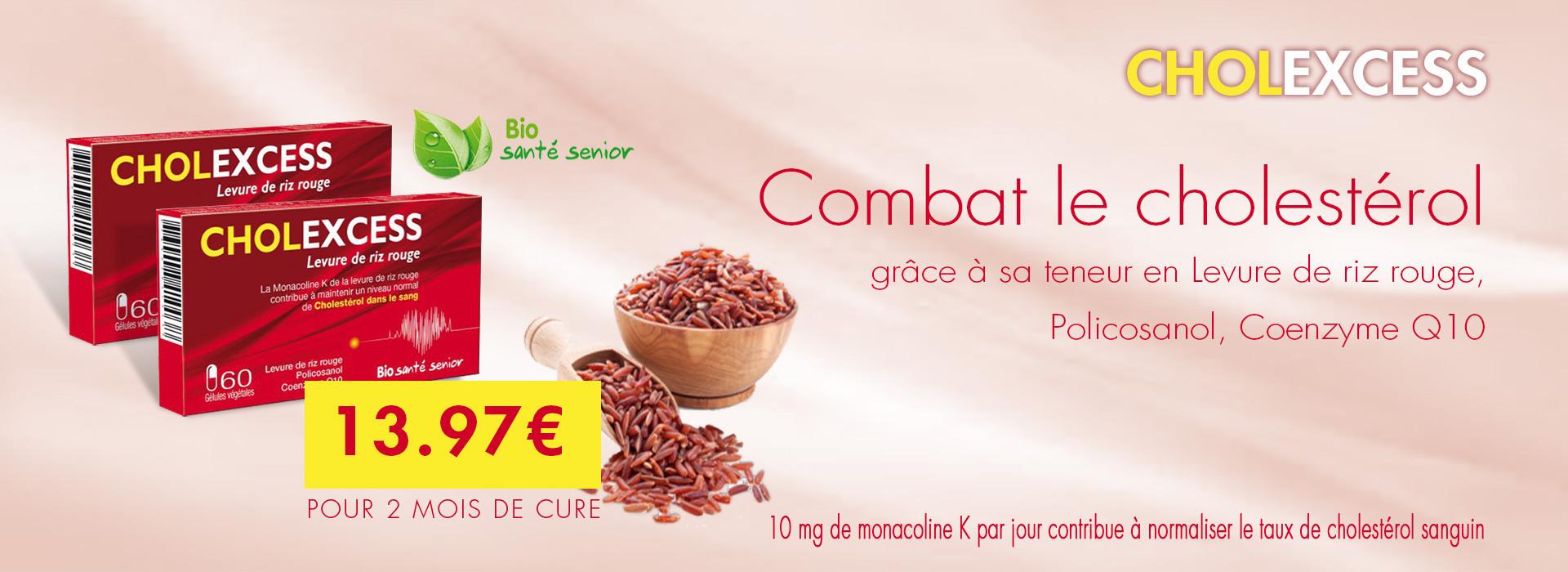 levure de riz rouge cholesterol